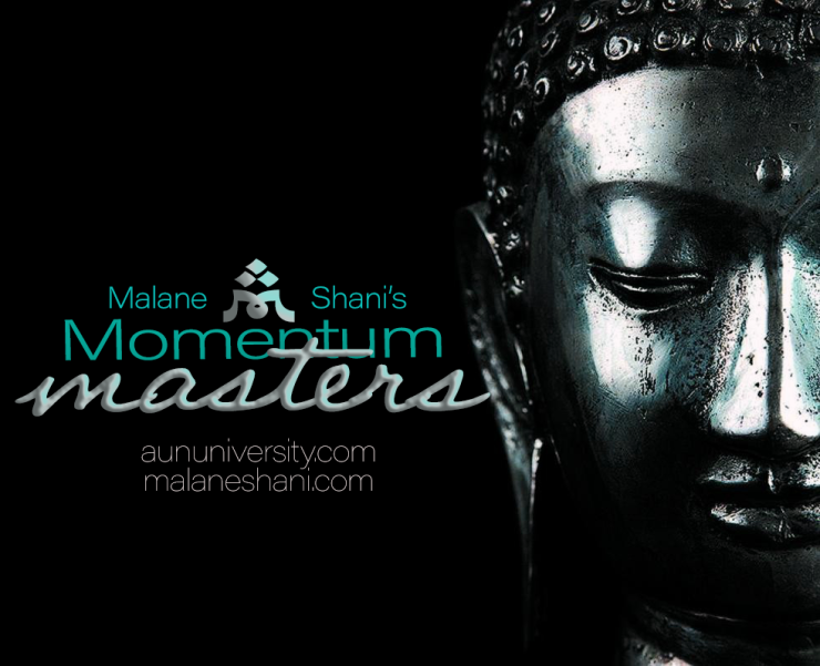 momentum masters facebook photo final.png